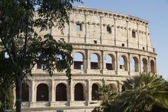 Colosseo stock afbeeldingen