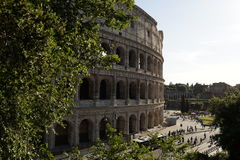 Colosseo stock afbeelding
