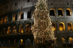 Colosseo at Christmas (Rome, Ita. Colosseo with a christmas tree at night (Rome, Italy Stock Photos
