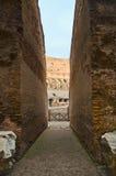 Colosseo (Colosseum) Stock Photos