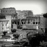 Colosseo Italien Roma Arkivbild