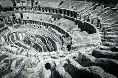 The colosseo Royalty Free Stock Images