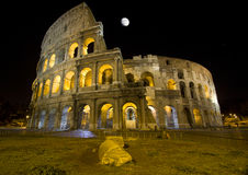 Colosseo by night Stock Images