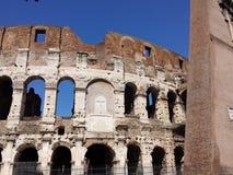 colosseo Rzymu Zdjęcie Royalty Free