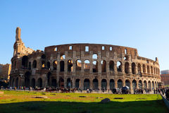 Colosseo. Was the ancient Roman arena animal performance Stock Images
