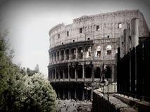 Colosseum在罗马 库存照片