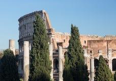 Colosseum详细资料在罗马 库存照片