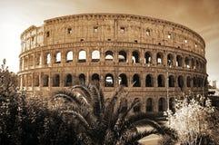 colosseum διάσημη Ιταλία η περισσότερη όψη της Ρώμης θέσεων Στοκ φωτογραφία με δικαίωμα ελεύθερης χρήσης