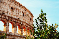 Colosseum в Рим стоковые изображения