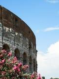 Colosseum стоковые фото