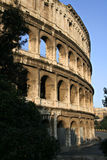 The Colosseum #2 Royalty Free Stock Photo