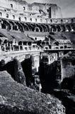 colosseum Arkivfoton