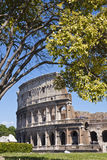 Colosseum. The Colosseum is an elliptical amphitheatre in the centre of the city of Rome, Italy, the largest ever built in the Roman Empire royalty free stock image
