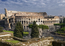 Colosseum. The ruins of the Colosseum from the Palatine Hill Royalty Free Stock Images