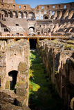 Colosseum. The Colosseum in Rome city Royalty Free Stock Images