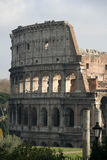The Colosseum #3 Royalty Free Stock Images