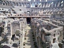 Colosseum stock afbeeldingen