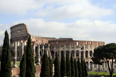 The Colosseum #5 Stock Photos