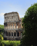 Colosseum. The Colosseum in Rome, Italy Stock Photography