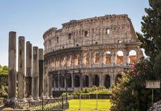 Colosseum Immagini Stock Libere da Diritti
