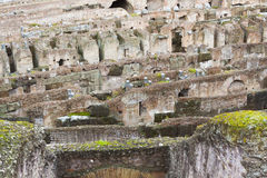 Colosseum Amphitheatre Arena and Hypogeum - Rome Royalty Free Stock Image