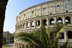 Colosseum Amphitheatre in Rome Royalty-vrije Stock Fotografie