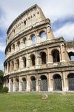 Colosseum (Amphitheatrum Flavium), Rzym Zdjęcia Stock