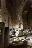 Colosseum binnen royalty-vrije stock fotografie