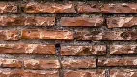 Colosseum cegły w Rzym Ściana cegły zdjęcia royalty free