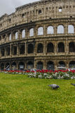 Colosseum in a cloudy day Stock Images