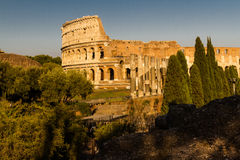 Colosseum or Coliseum Amphitheatre, evening in Rome. Royalty Free Stock Photography
