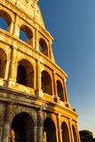 Colosseum or Coliseum Amphitheatre, evening in Rome. Stock Images