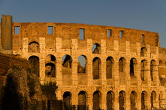 Colosseum or Coliseum Amphitheatre, evening in Rome. Stock Image