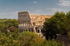 Colosseum or Coliseum Amphitheatre in Rome. Stock Photos
