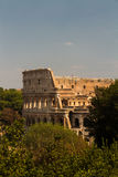 Colosseum or Coliseum Amphitheatre in Rome. Royalty Free Stock Photography