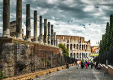 Colosseum Coliseum from the Roman Forum, Rome Stock Images