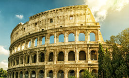 Colosseum (Coliseum) in Rome. Italy Stock Photos