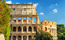 Colosseum (Coliseum) in Rome. Italy Royalty Free Stock Photography