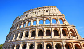 Colosseum Coliseum in Rome. Italy Royalty Free Stock Photos