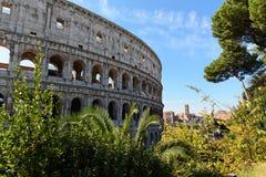 Colosseum de Roma Fotografia de Stock Royalty Free
