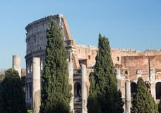 Colosseum details in Rome Stock Photo