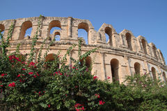 Colosseum di EL Jem, Tunisia Fotografia Stock Libera da Diritti