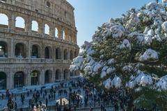 Colosseum durante la nieve imágenes de archivo libres de regalías