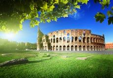 Colosseum em Roma, Itália Imagem de Stock Royalty Free