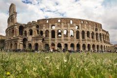 Colosseum en primavera Foto de archivo libre de regalías