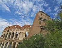 Colosseum framed Royalty Free Stock Image