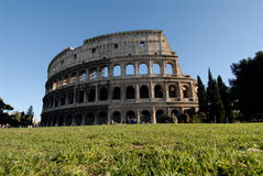 Colosseum and green lawn Stock Images