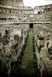 Colosseum i Roma Royaltyfri Bild