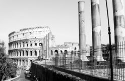 Colosseum and Imperial Forum. Imperial Forum and the Ancient Colosseum in Rome, Italy in the distance Stock Images