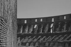 Colosseum on inside blur defocused shot with culture and roman history blood battles.  Tourism in italy.  Copy space. Stock Photos